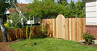"Western red cedar. Locally sourced, with full 3/4"" thick dog eared boards and arch top gates."